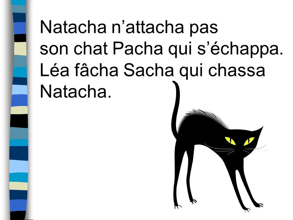 Natacha n'attacha pas son chat Pacha qui s'échappa