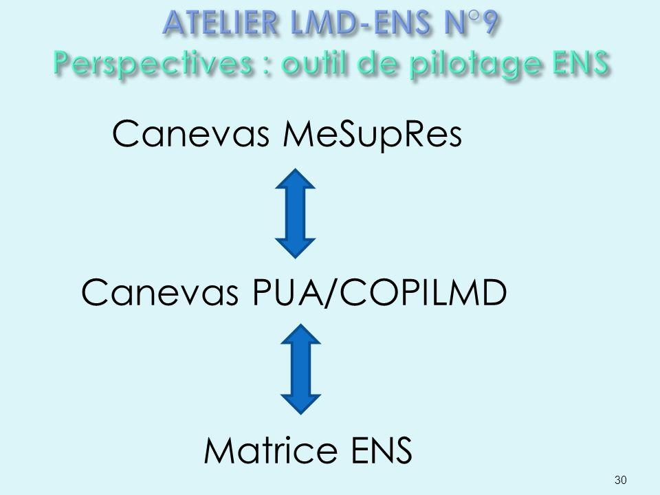 ATELIER LMD-ENS N°9 Perspectives : outil de pilotage ENS