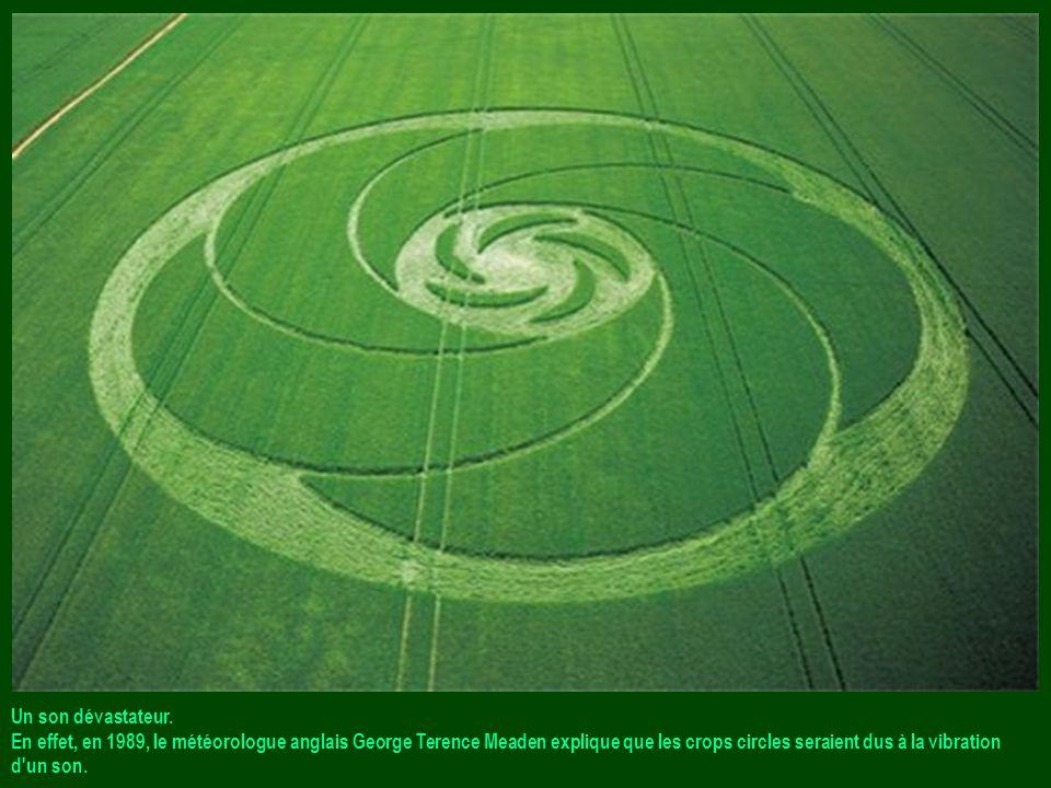 Un son dévastateur. En effet, en 1989, le météorologue anglais George Terence Meaden explique que les crops circles seraient dus à la vibration.