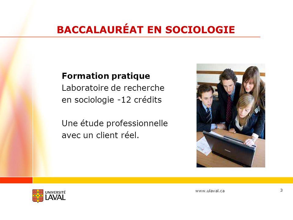 BACCALAURÉAT EN SOCIOLOGIE