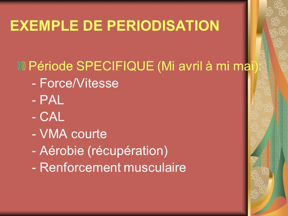 EXEMPLE DE PERIODISATION