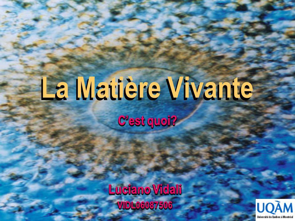 La Matière Vivante C'est quoi Luciano Vidali VIDL06087506