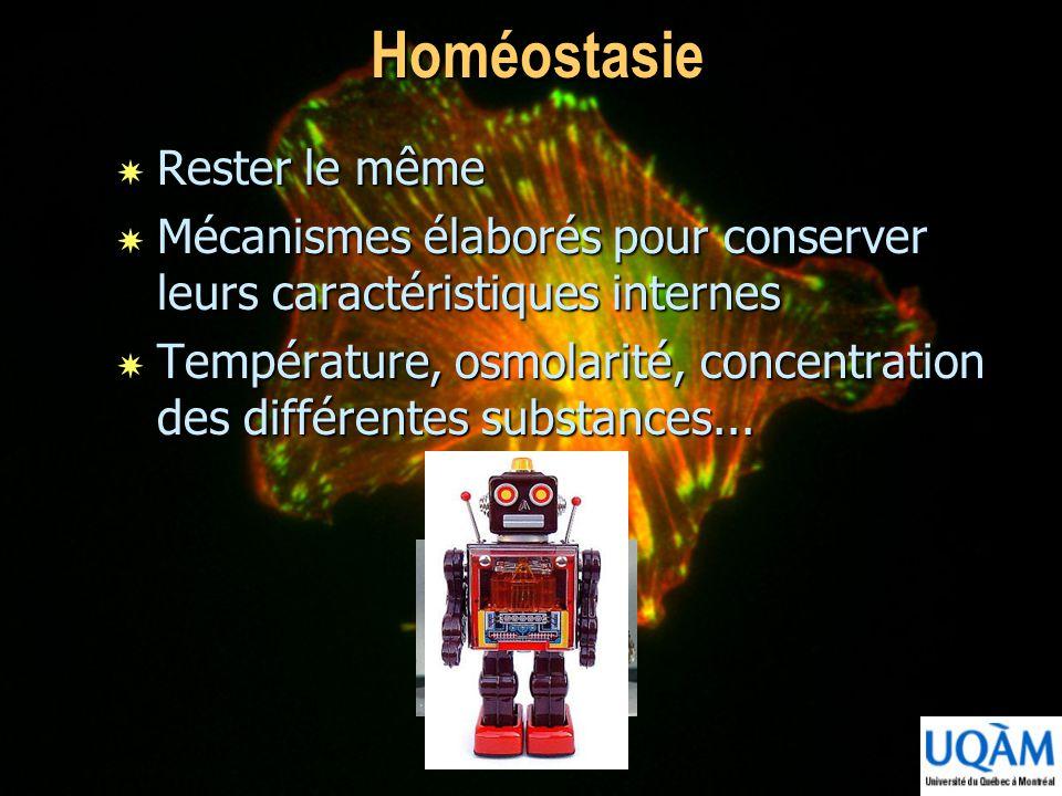 Homéostasie Rester le même