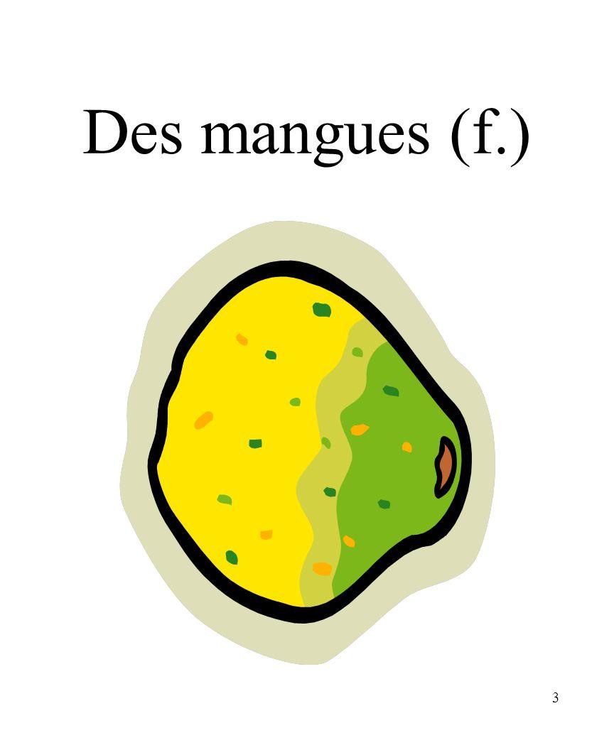 CHAPITRE 8 LES ALIMENTS 3/25/2017 Des mangues (f.) Madame Craven