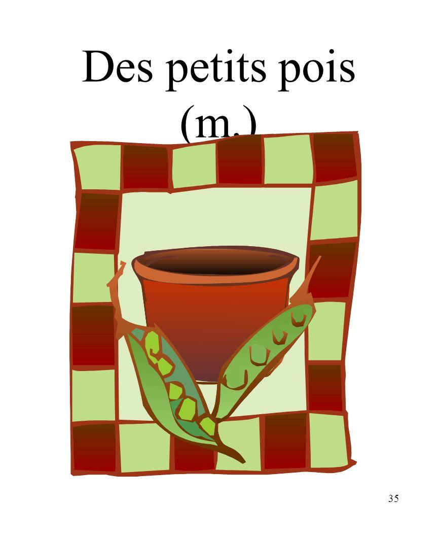 CHAPITRE 8 LES ALIMENTS 3/25/2017 Des petits pois (m.) Madame Craven