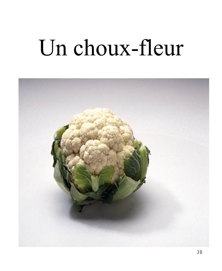 CHAPITRE 8 LES ALIMENTS 3/25/2017 Un choux-fleur Madame Craven
