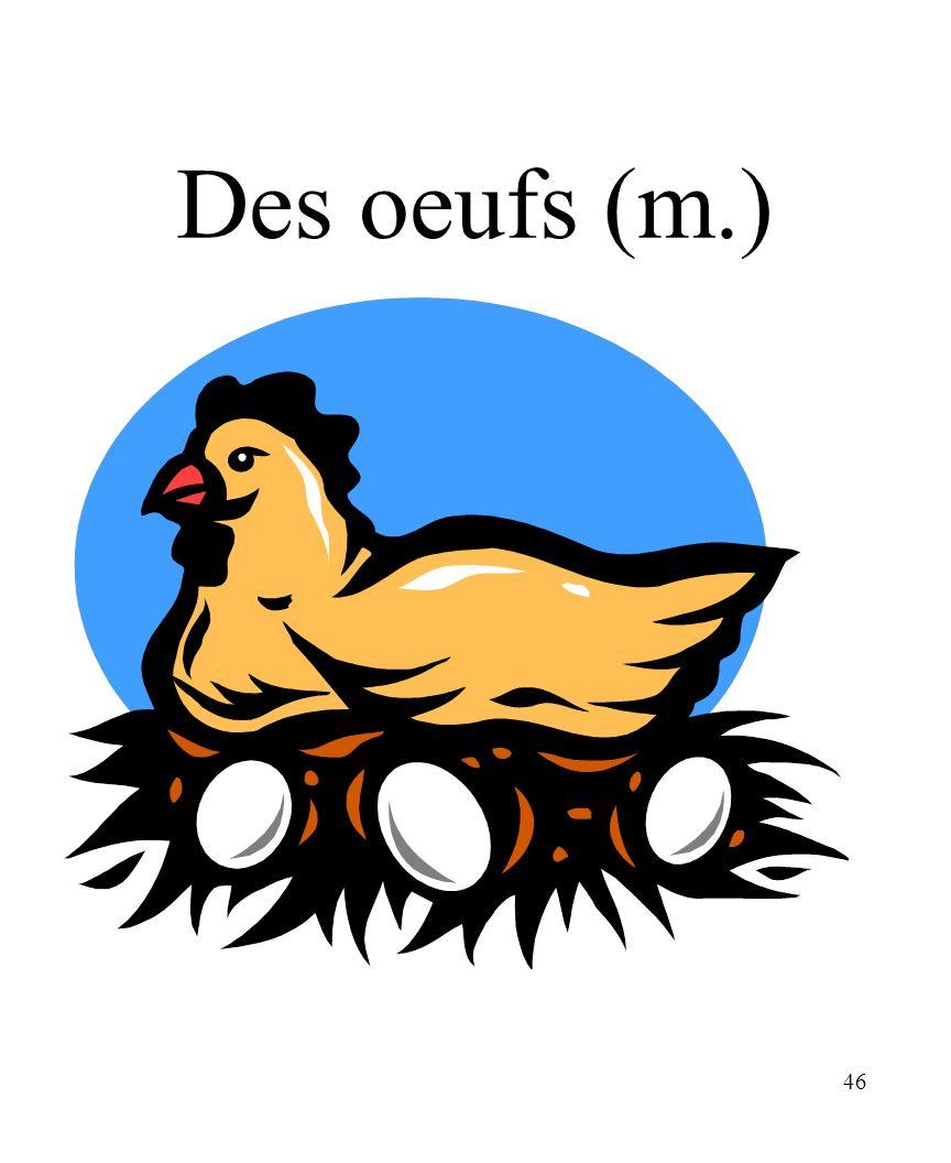 CHAPITRE 8 LES ALIMENTS 3/25/2017 Des oeufs (m.) Madame Craven