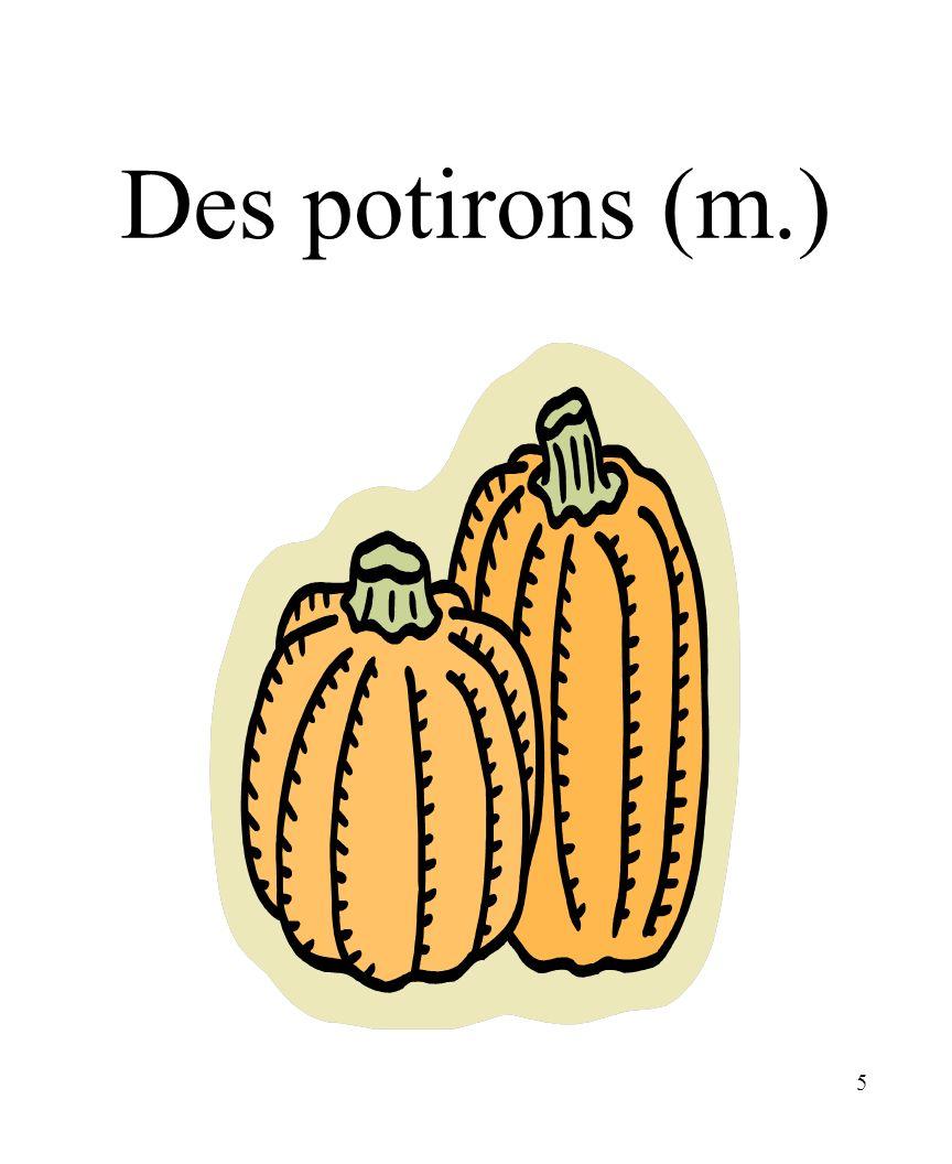 CHAPITRE 8 LES ALIMENTS 3/25/2017 Des potirons (m.) Madame Craven