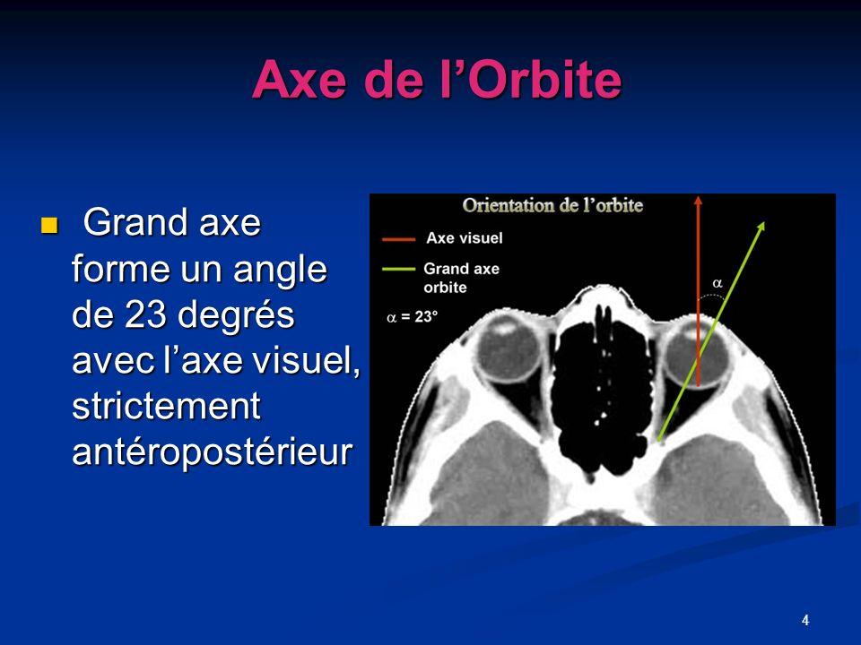 Axe de l'OrbiteGrand axe forme un angle de 23 degrés avec l'axe visuel, strictement antéropostérieur.