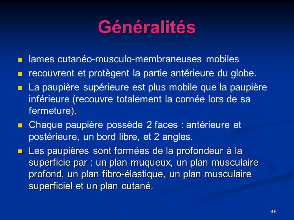 Généralités lames cutanéo-musculo-membraneuses mobiles