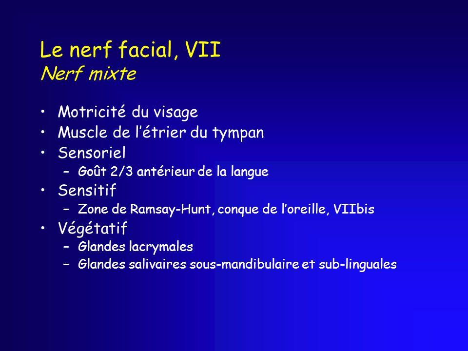 Le nerf facial, VII Nerf mixte