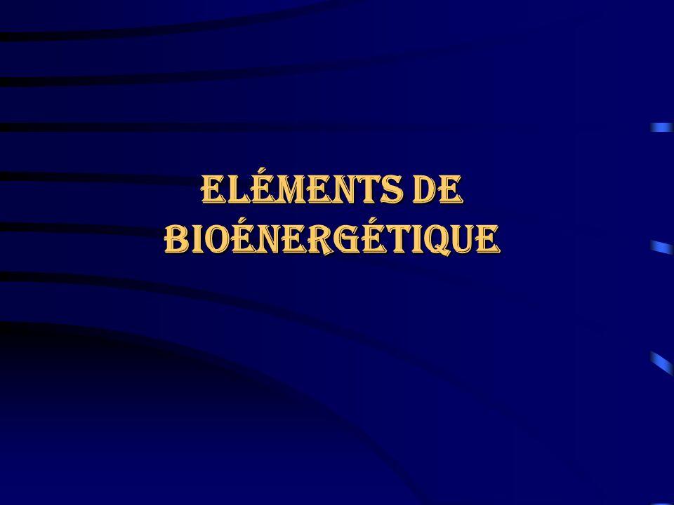 Eléments de Bioénergétique