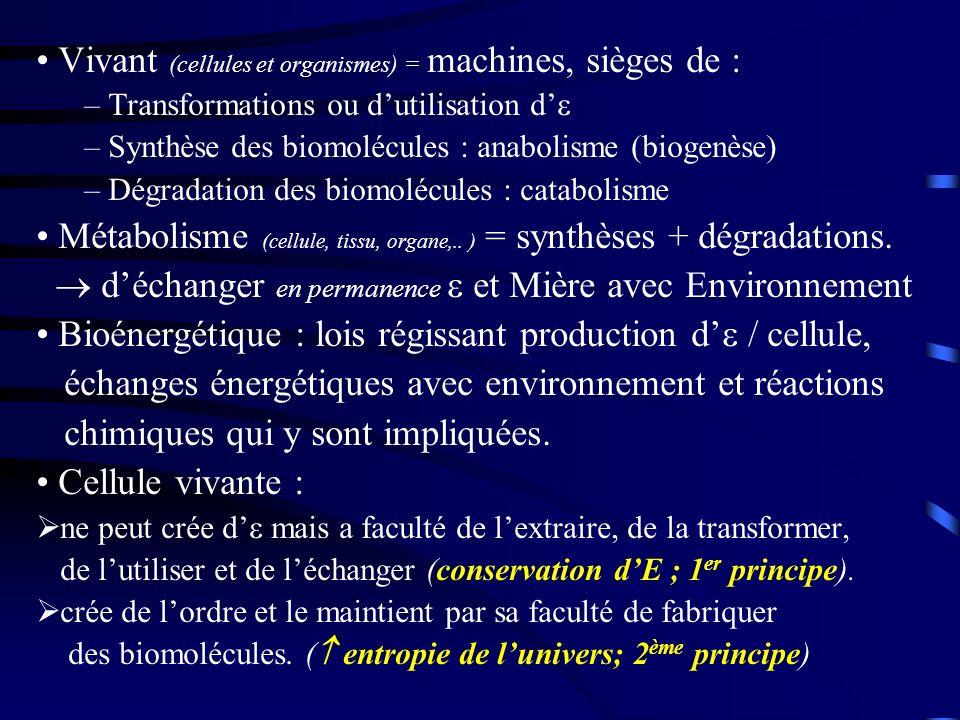 Vivant (cellules et organismes) = machines, sièges de :