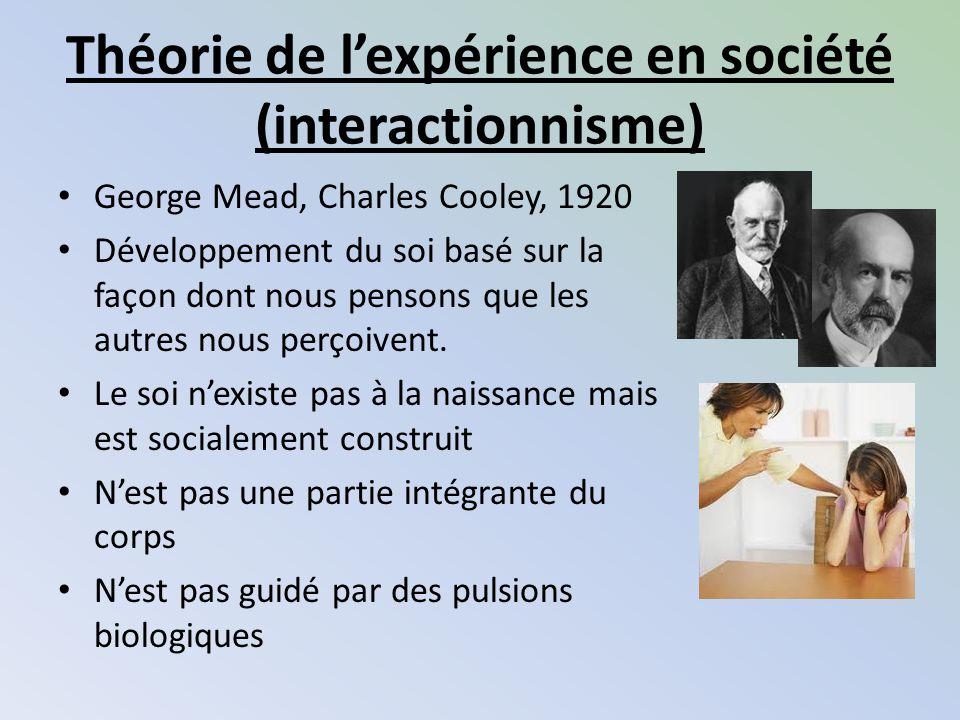 Théorie de l'expérience en société (interactionnisme)