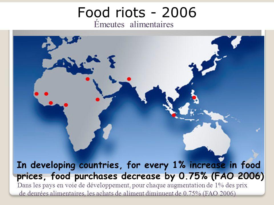 Food riots - 2006 Émeutes alimentaires