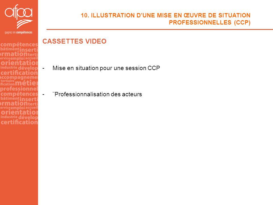 10. ILLUSTRATION D'UNE MISE EN ŒUVRE DE SITUATION PROFESSIONNELLES (CCP)