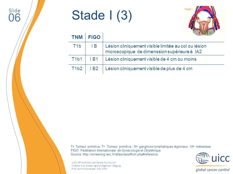 Stade I (3) 06 Slide TNM FIGO T1b I B