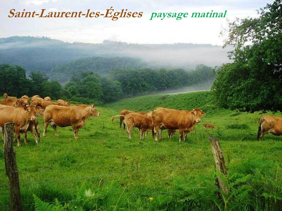 Saint-Laurent-les-Églises paysage matinal