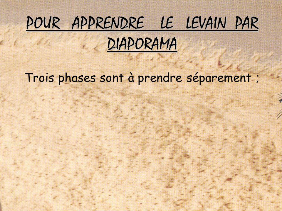 POUR APPRENDRE LE LEVAIN PAR DIAPORAMA