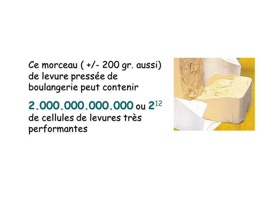 2.000.000.000.000 ou 212 de cellules de levures très performantes
