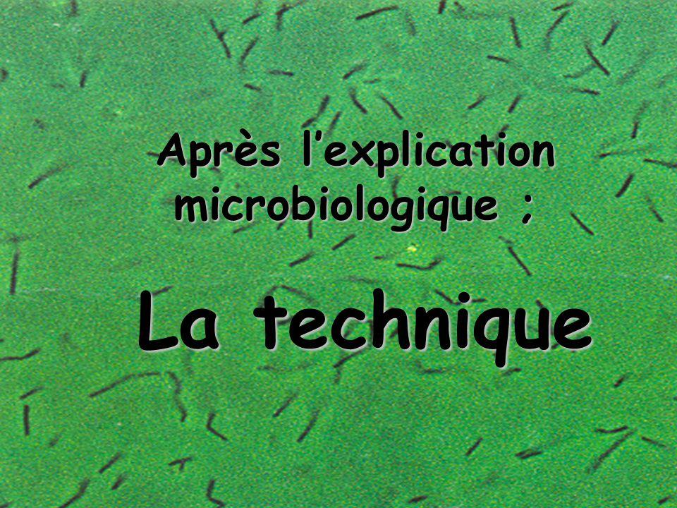 Après l'explication microbiologique ; la technique