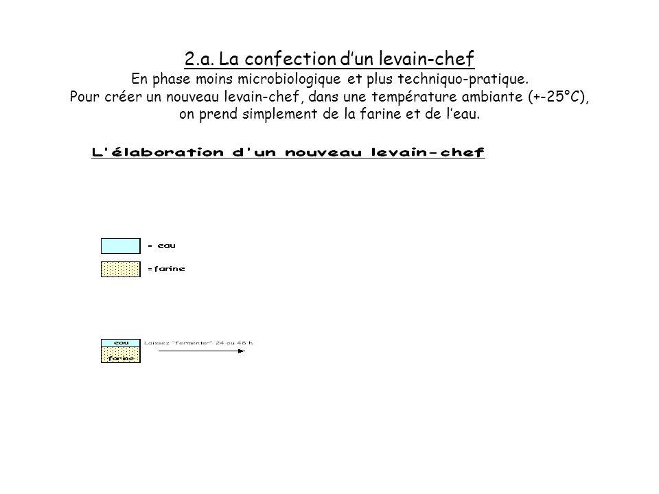 2.a. La confection d'un levain-chef En phase moins microbiologique et plus techniquo-pratique.