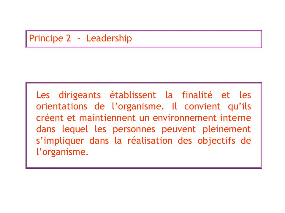 Principe 2 - Leadership
