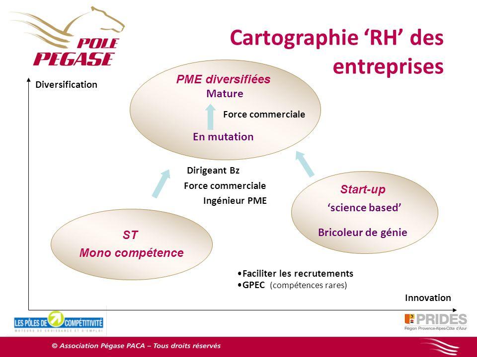 Cartographie 'RH' des entreprises PME diversifiées Mature En mutation