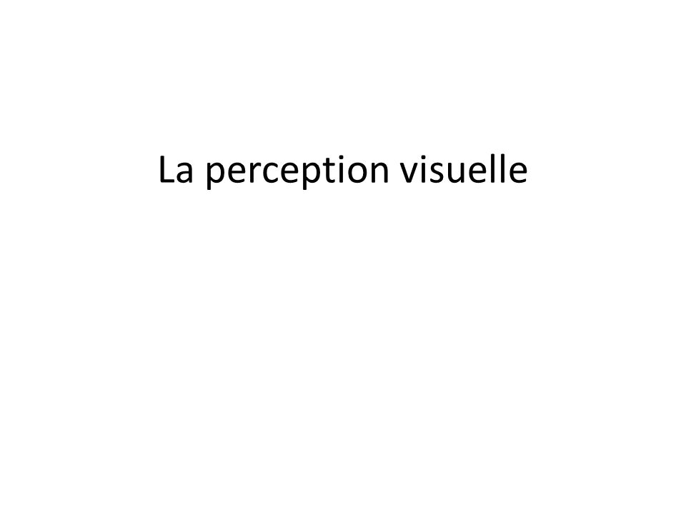 La perception visuelle