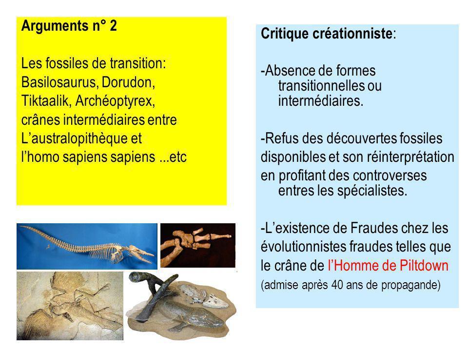 Les fossiles de transition: Basilosaurus, Dorudon,