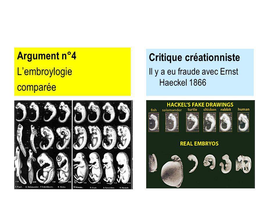 Critique créationniste