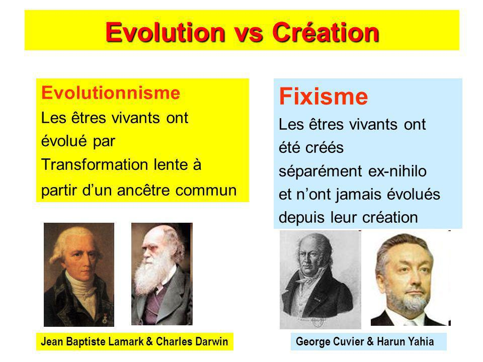 Evolution vs Création Fixisme Evolutionnisme Les êtres vivants ont