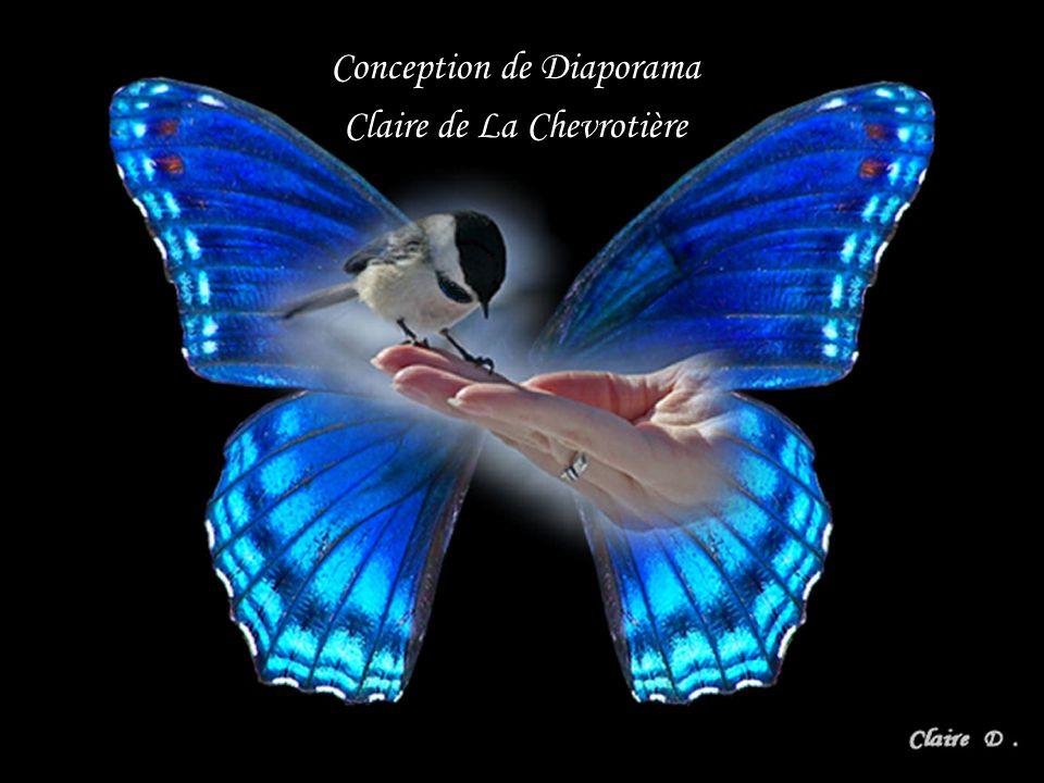 Conception de Diaporama Claire de La Chevrotière