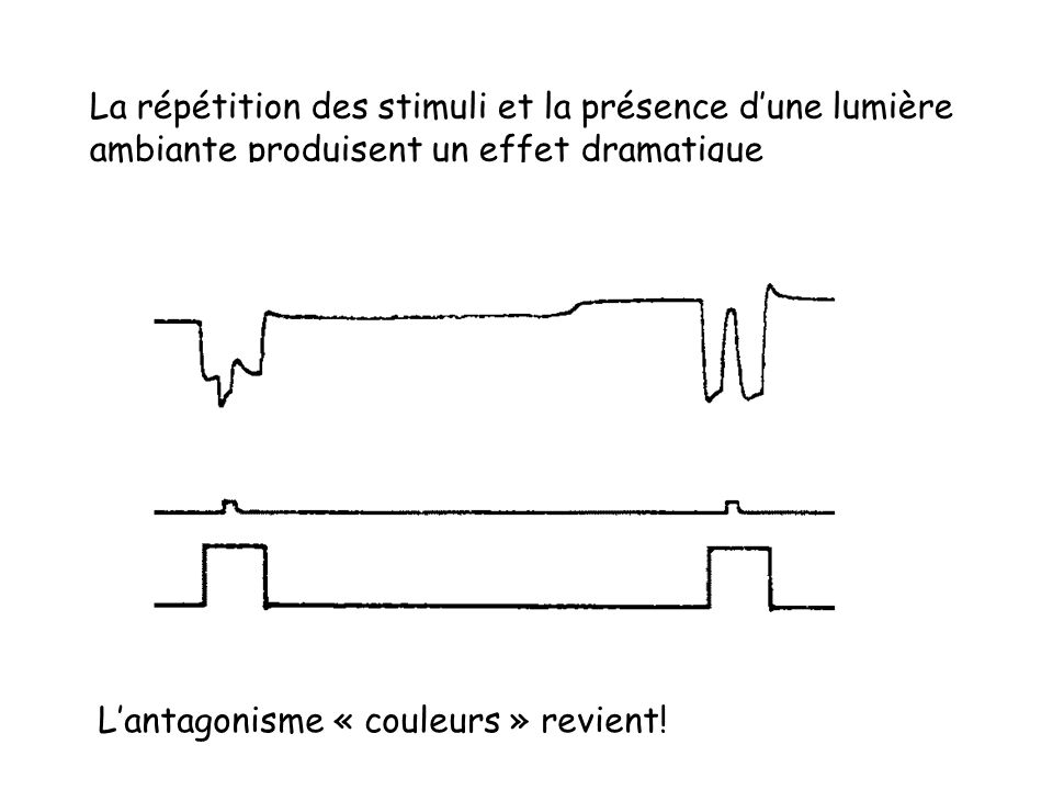 La répétition des stimuli et la présence d'une lumière ambiante produisent un effet dramatique