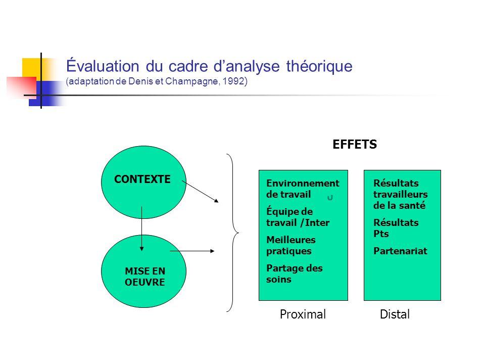 Évaluation du cadre d'analyse théorique (adaptation de Denis et Champagne, 1992)