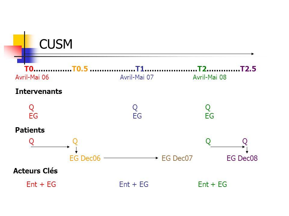 CUSM T0…………….T0.5 ……….………T1………………….T2………..…T2.5 Intervenants Q Q Q