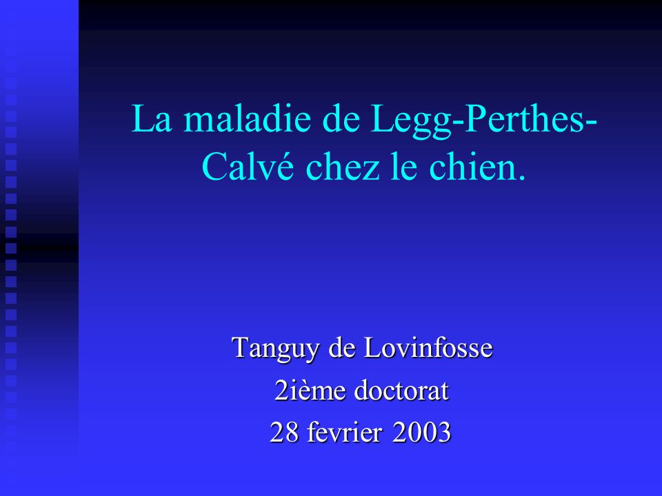 La maladie de Legg-Perthes-Calvé chez le chien.