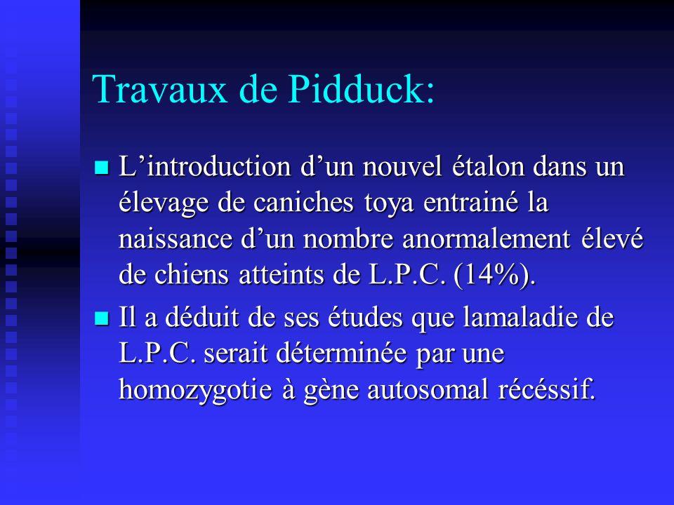 Travaux de Pidduck: