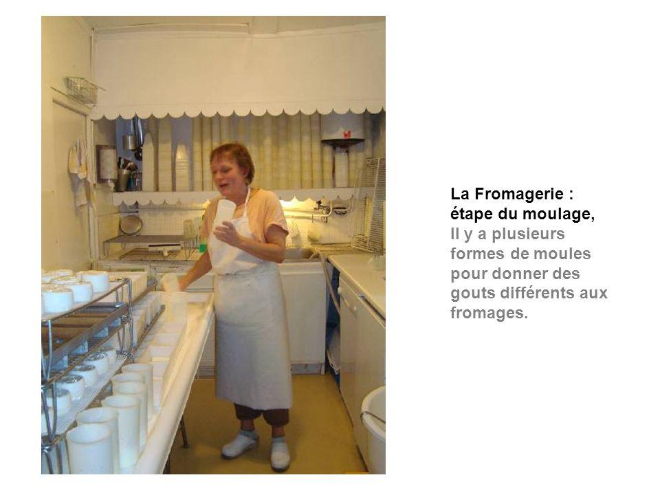 La Fromagerie : étape du moulage,