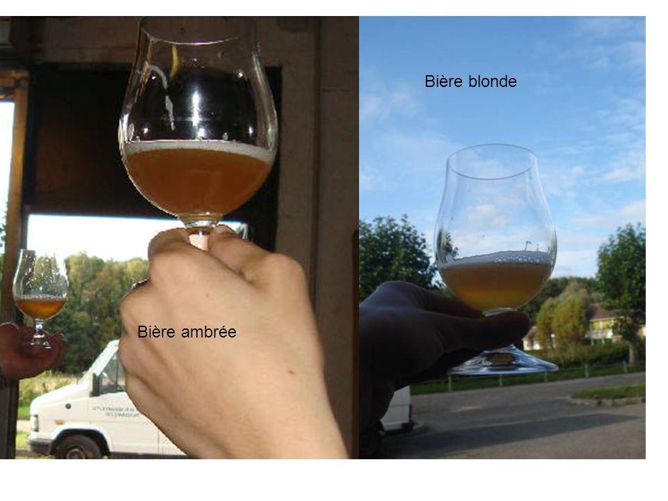 Bière blonde Bière ambrée