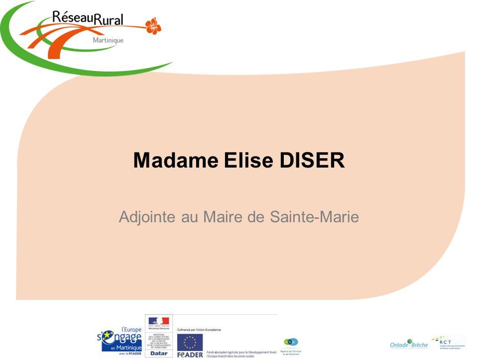 Adjointe au Maire de Sainte-Marie