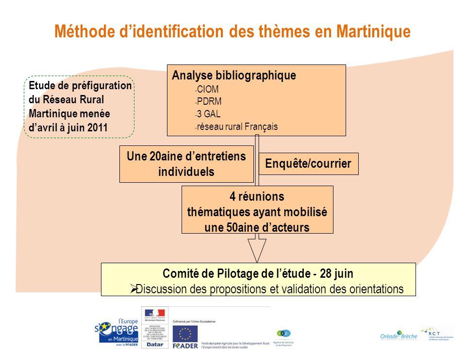Méthode d'identification des thèmes en Martinique