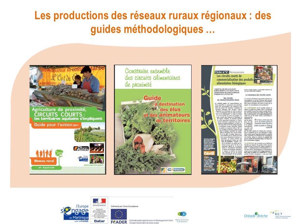 Les productions des réseaux ruraux régionaux : des guides méthodologiques …