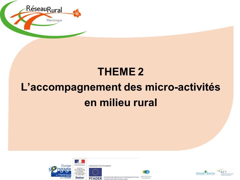 L'accompagnement des micro-activités