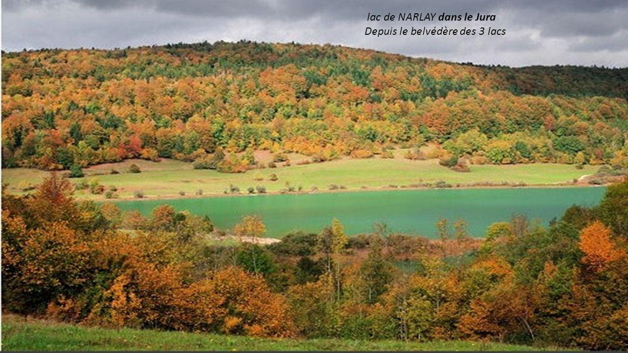 lac de NARLAY dans le Jura