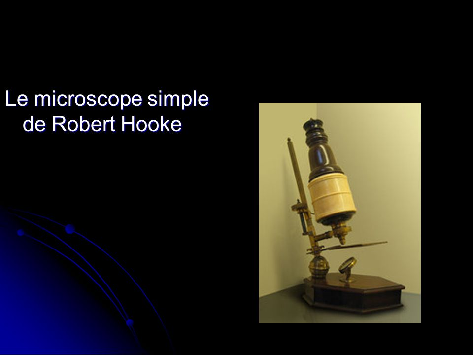 Le microscope simple de Robert Hooke