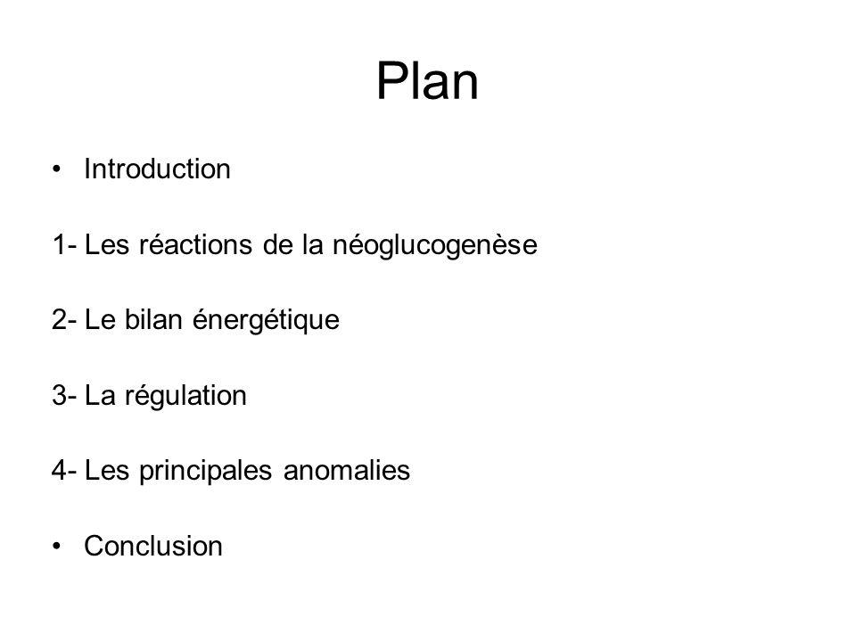 Plan Introduction 1- Les réactions de la néoglucogenèse