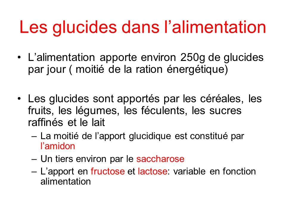 Les glucides dans l'alimentation