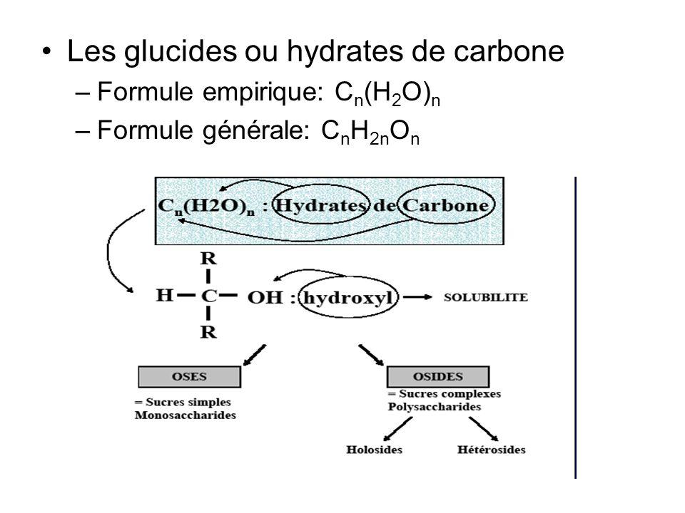 Les glucides ou hydrates de carbone