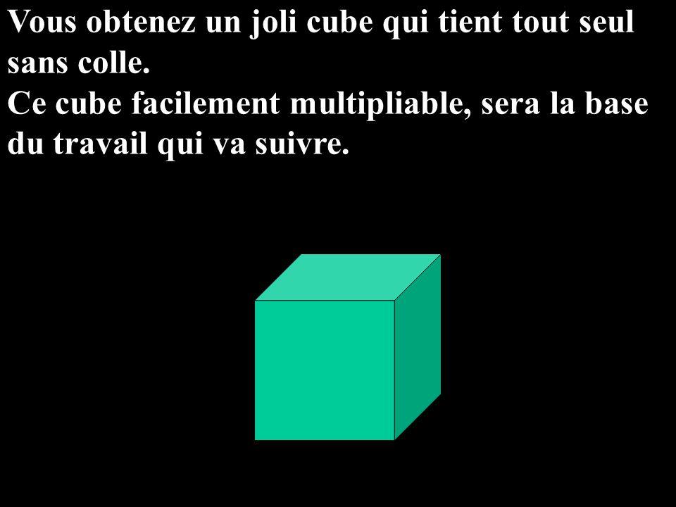 Vous obtenez un joli cube qui tient tout seul